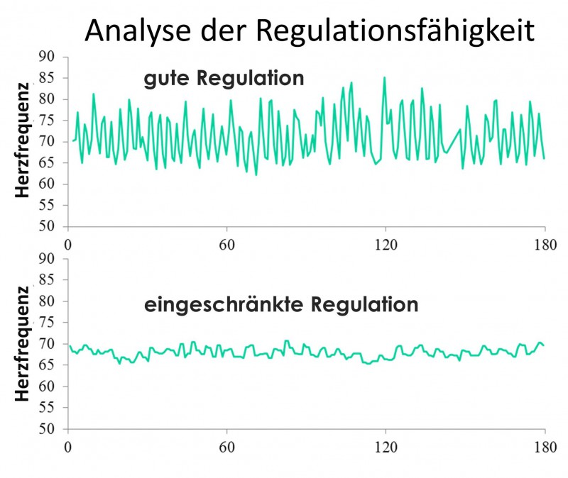 Analyse_Regulationsfaehigkeit
